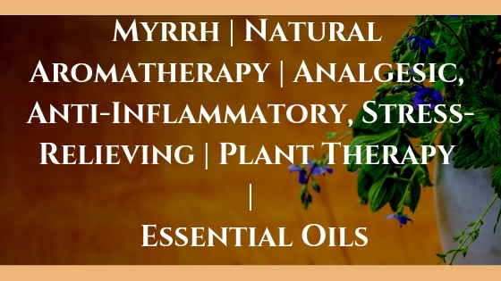 Myrrh | Natural Aromatherapy | Analgesic, Anti-Inflammatory, Stress-Relieving | Plant Therapy | Essential Oils
