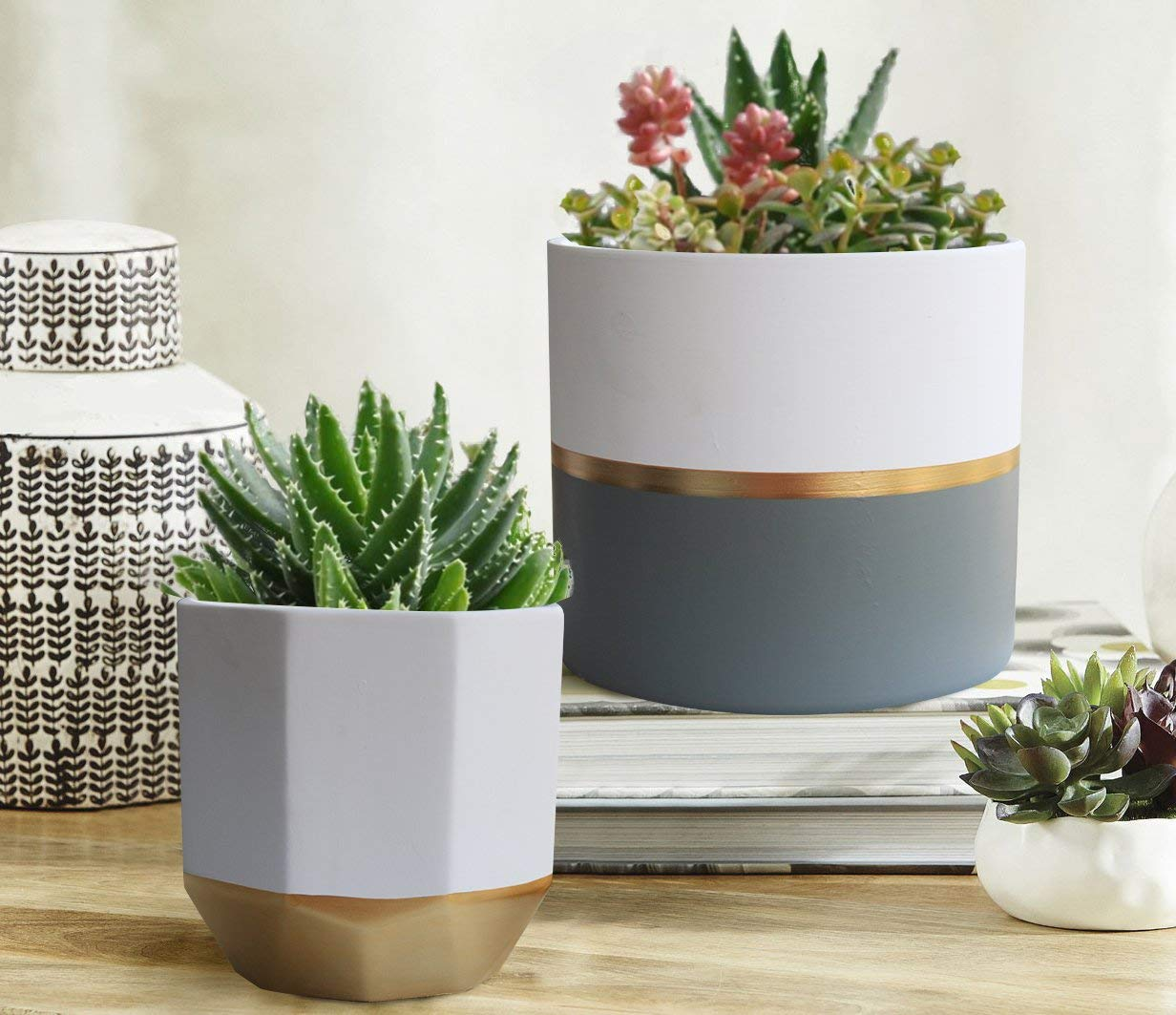 "White Ceramic Flower Pot Garden Planters 6.5"" Pack 2 Indoor, Plant Containers with Gold and Grey Detailing."