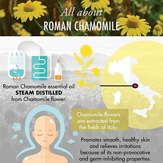 Roman Chamomile Essential Oil - 100% Pure Therapeutic Grade for Hair, Face, Skin, Eczema, Sleep, Bath Relaxation, Diffuser 2